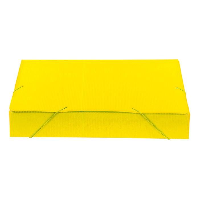 Pasta Polionda 55mm, Pct. C/ 10 Unidades - Polibras - Amarela - 204/06