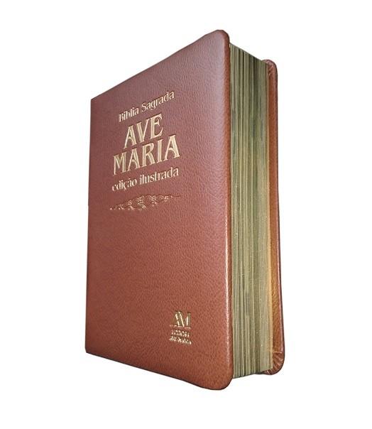 Bíblia Ilustrada Luxo - Média - Marrom
