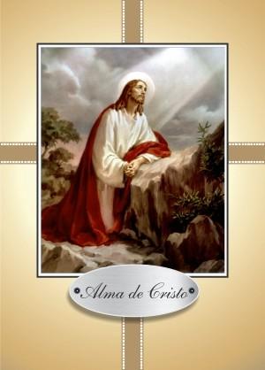 Santinho com Oração Alma de Cristo