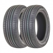 Kit 2 Pneus Roadking Aro 15 195/55R15 Argos HP 85V