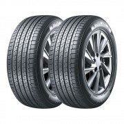 Kit 2 Pneus Wanli Aro 17 215/60R17 AS-028 96H