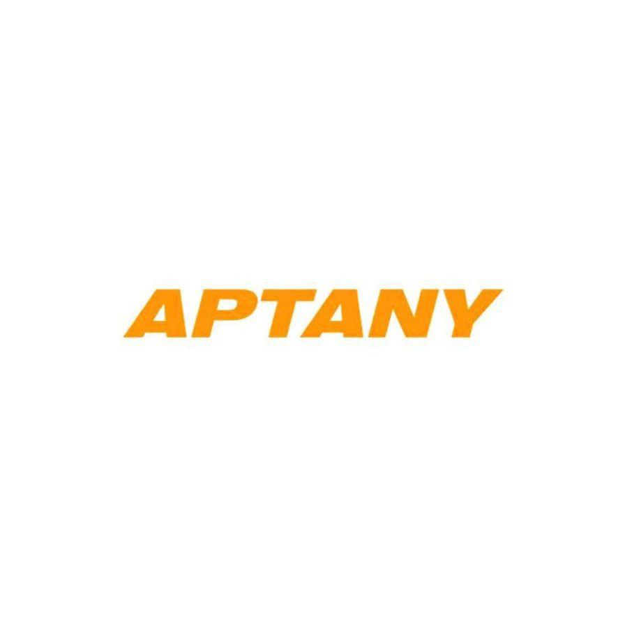 Kit 2 Pneus Aptany Aro 18 255/55R18 RU028 109V