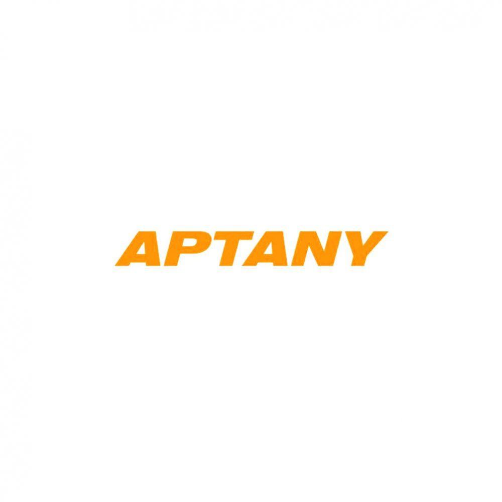 Kit 2 Pneus Aptany Aro 20 275/55R20 RA301 117H