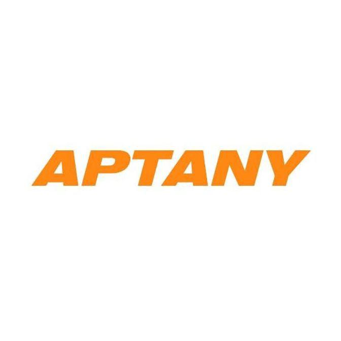 Kit 4 Pneus Aptany Aro 16 205/65R16 RP203 95H