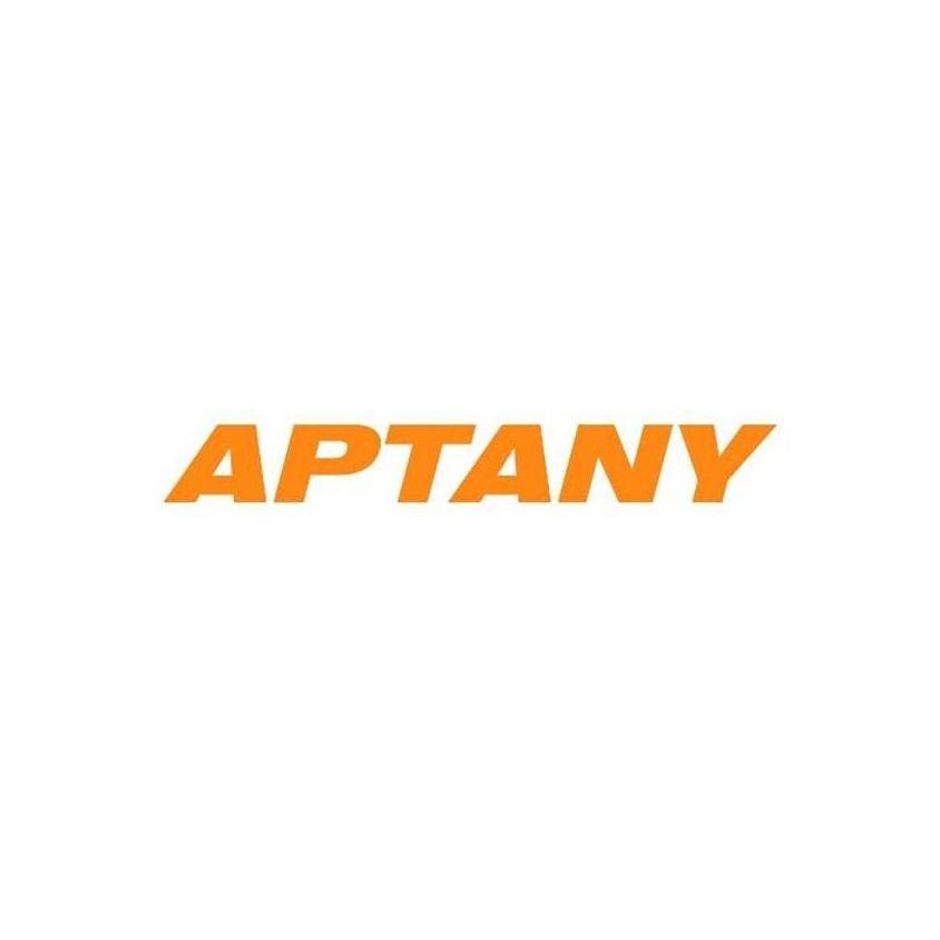 Kit 4 Pneus Aptany Aro 19 245/35R19 RA301 93W