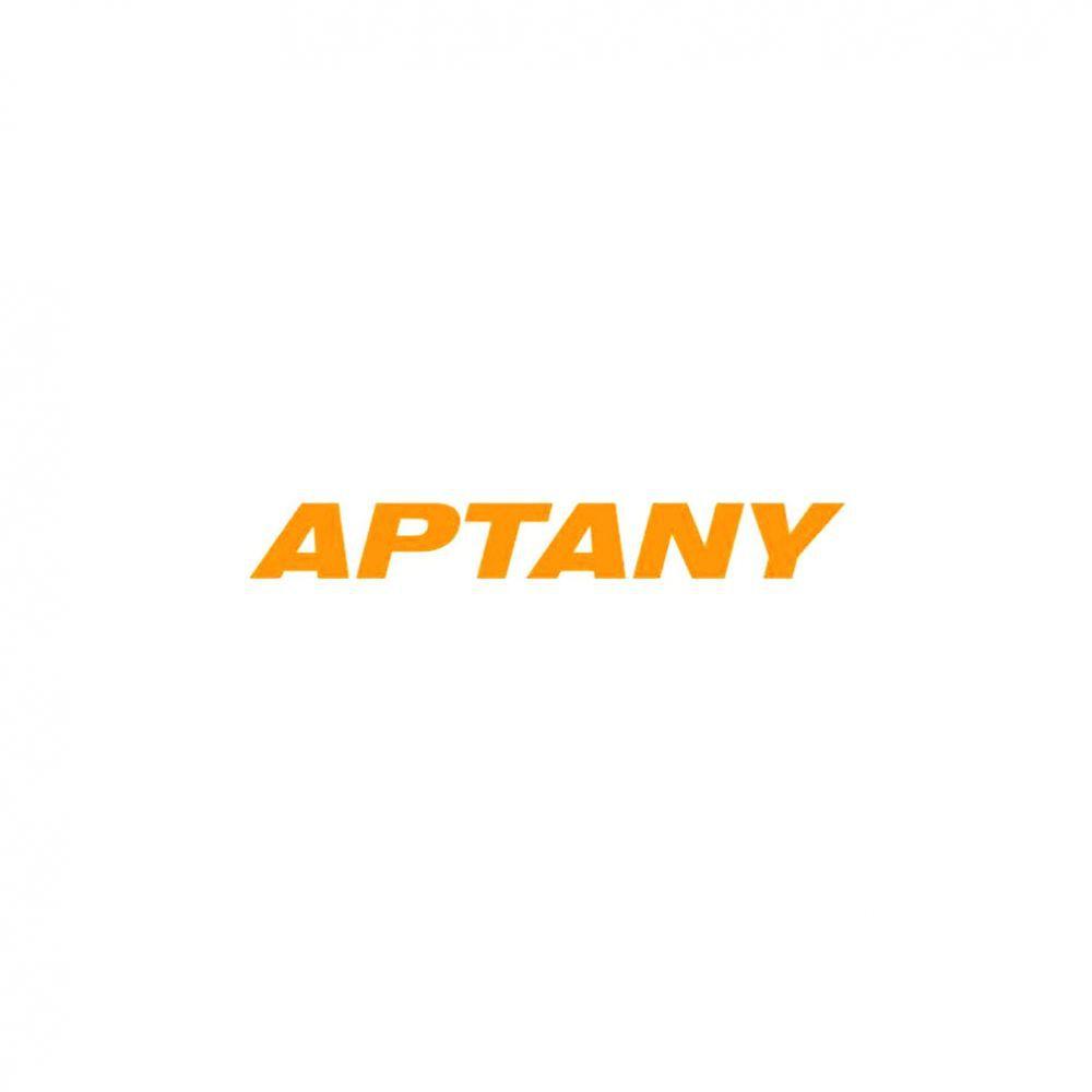 Kit 4 Pneus Aptany Aro 19 255/40R19 RA301 100W