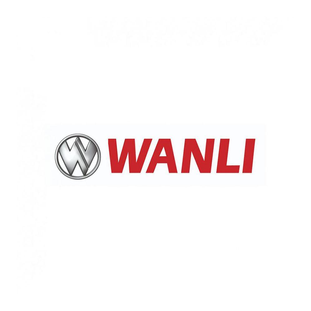 Kit 4 Pneus Wanli Aro 17 225/60R17 AS-028 99H