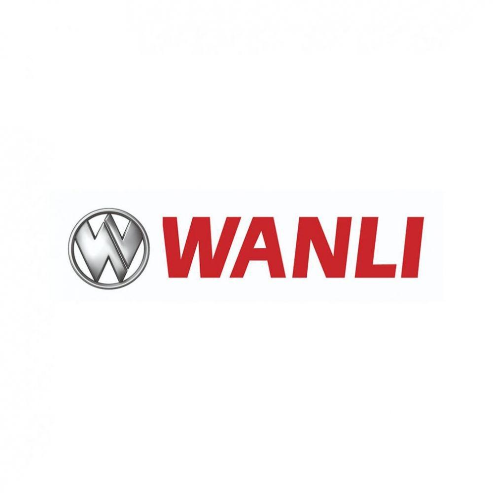 Kit 4 Pneus Wanli Aro 19 255/55R19 AS-028 107V