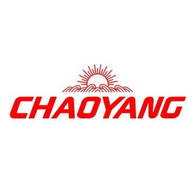Pneu Chaoyang Aro 17 225/55R17 Sport SA-37 Run Flat 104W