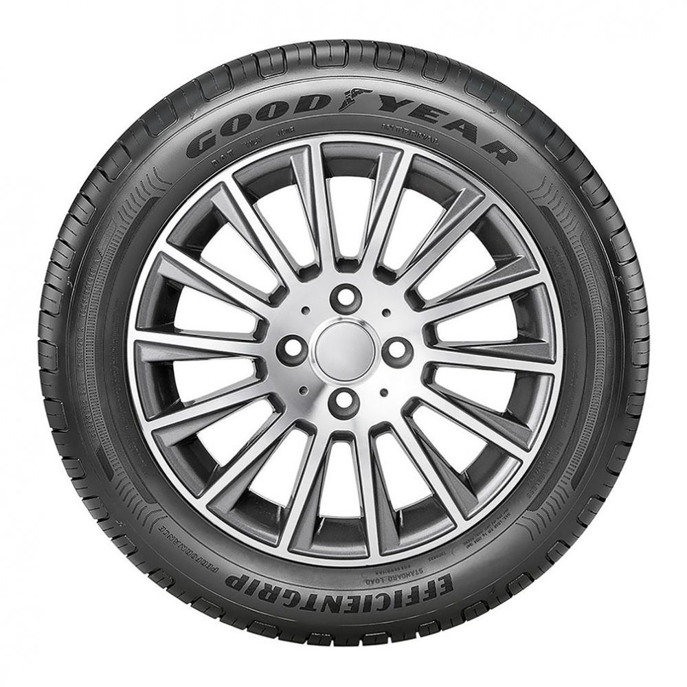 Pneu Goodyear Aro 15 195/65R15 Efficientgrip 91H