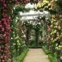Essência Rosas