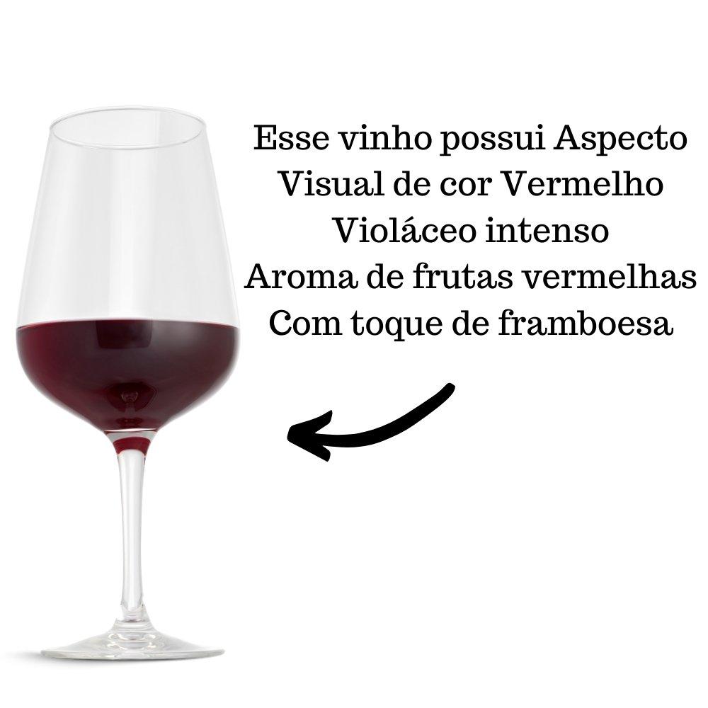 Kit 2 Vinhos De Mesa Pérgola Tinto Seco 750ml