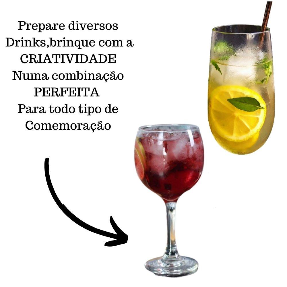 Kit 2 XAROPES DILUTE PREMIUM DRINKS E DOCES 500ML  Frutas Vermelhas E Limão Siciliano Zero