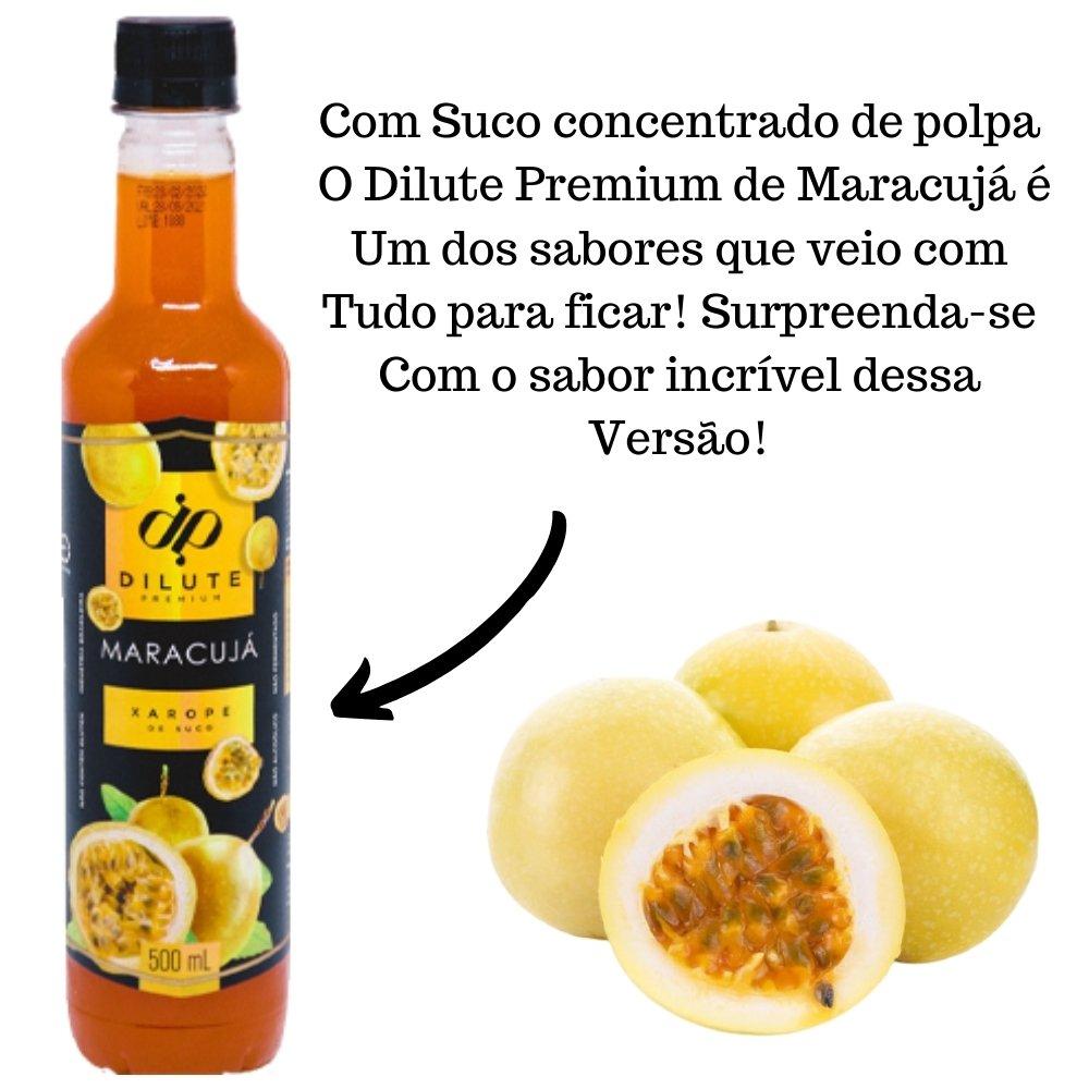 Kit 2 XAROPES DILUTE PREMIUM DRINKS E DOCES 500ML Maracujá