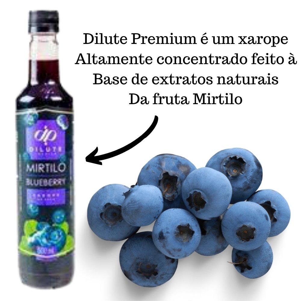 Kit 2 XAROPES DILUTE PREMIUM DRINKS E DOCES 500ML Mirtilo