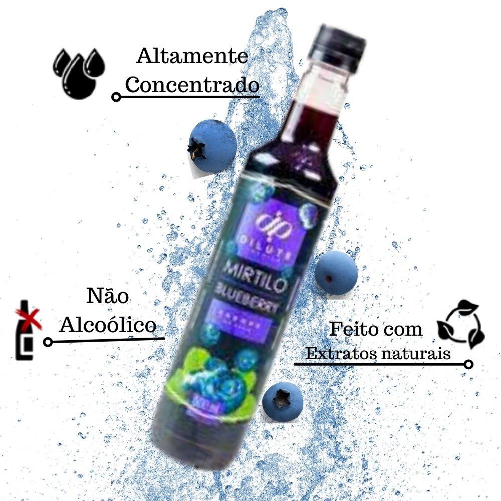 Kit 3 XAROPES DILUTE PREMIUM DRINKS E DOCES 500ML Mirtilo