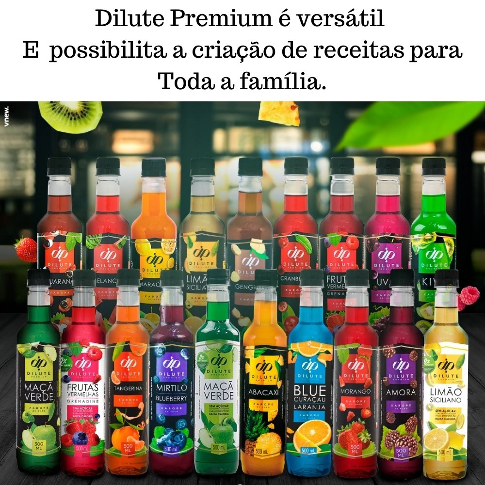 Kit 3 XAROPES DILUTE PREMIUM DRINKS E DOCES 500ML Mirtilo,Maçã Verde E Melancia
