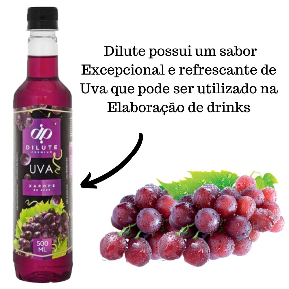 Kit 3 XAROPES DILUTE PREMIUM DRINKS E DOCES 500ML Uva