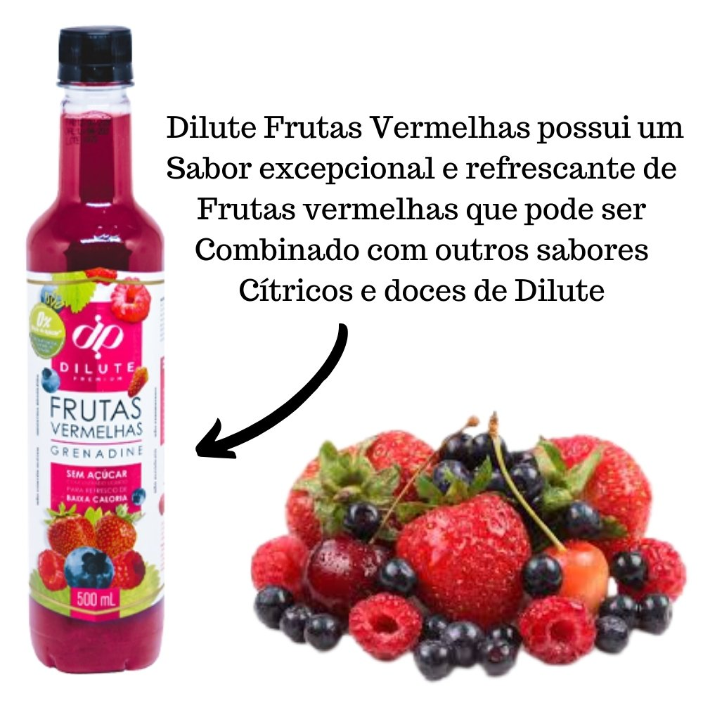 Kit 4 XAROPES DILUTE PREMIUM DRINKS E DOCES 500ML Frutas Vermelhas S/Açucar