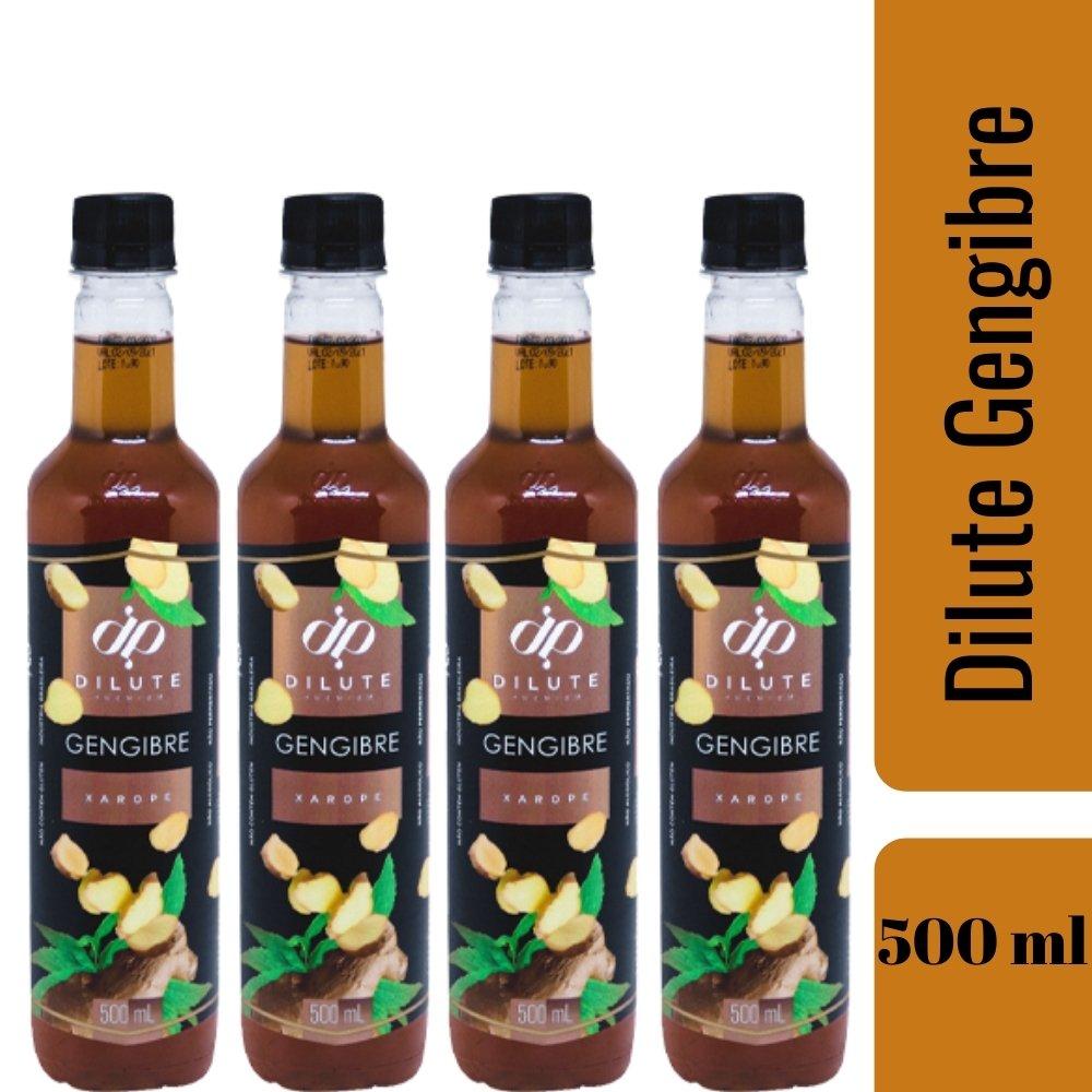 Kit 4 XAROPES DILUTE PREMIUM DRINKS E DOCES 500ML Gengibre