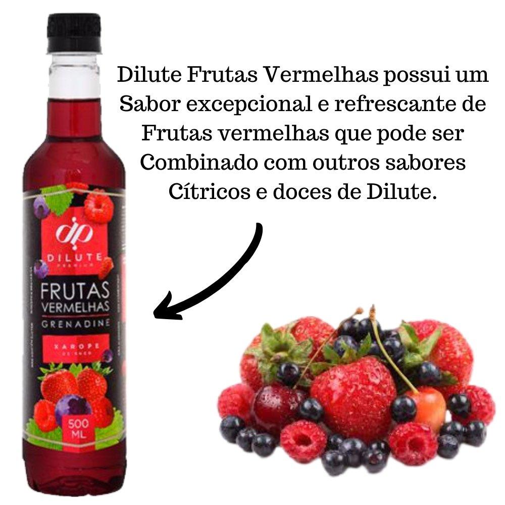 XAROPE DILUTE PREMIUM DRINKS E DOCES 500ML Futas Vermelhas
