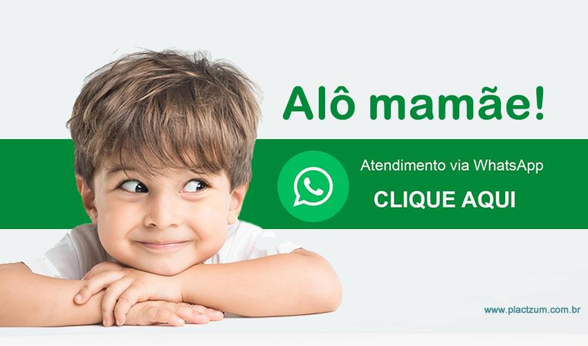 fale conosco pelo whatsapp (38) 98837.3628