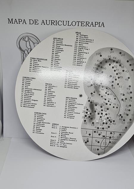 Mapa Auricular  Dra. Lia Paz