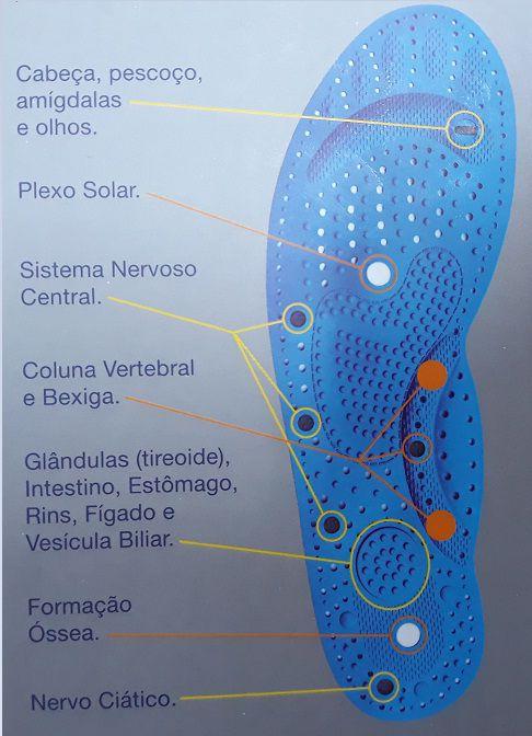 PALMILHA MAGNETICA