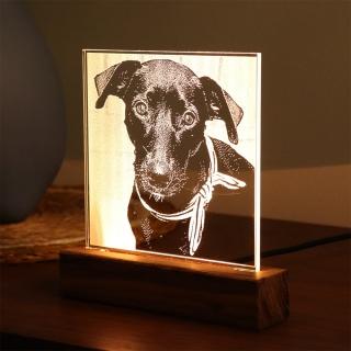 Luminária Selfie Pet