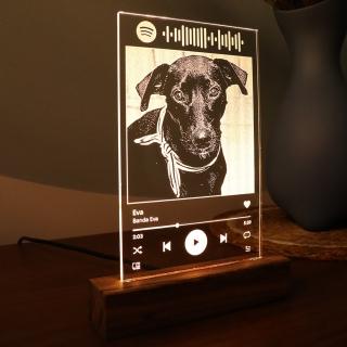 Luminária Tela Spotify - Pet