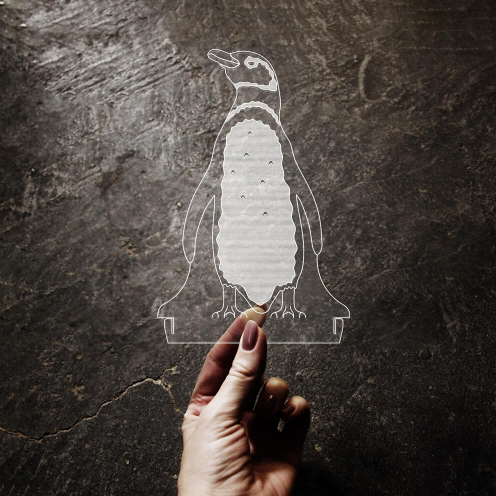Acrílico Pinguim