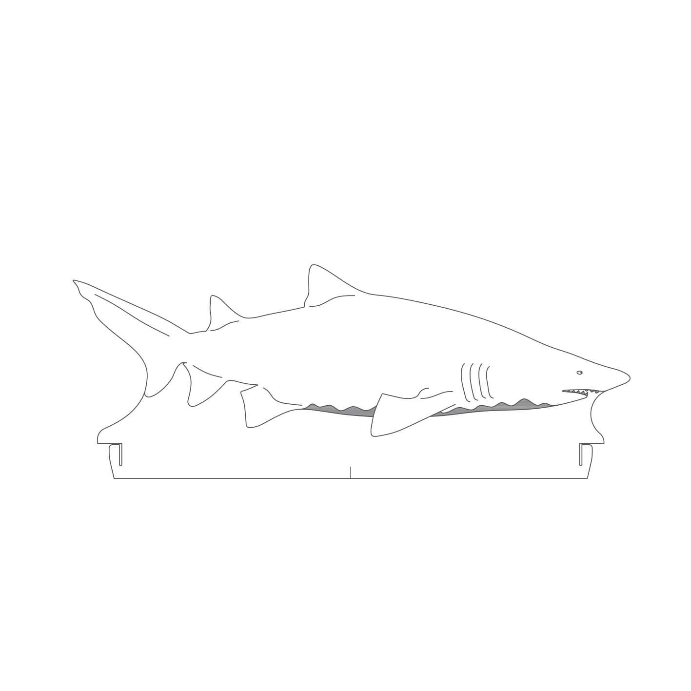 Marinhos - Acrílico Tubarão Touro