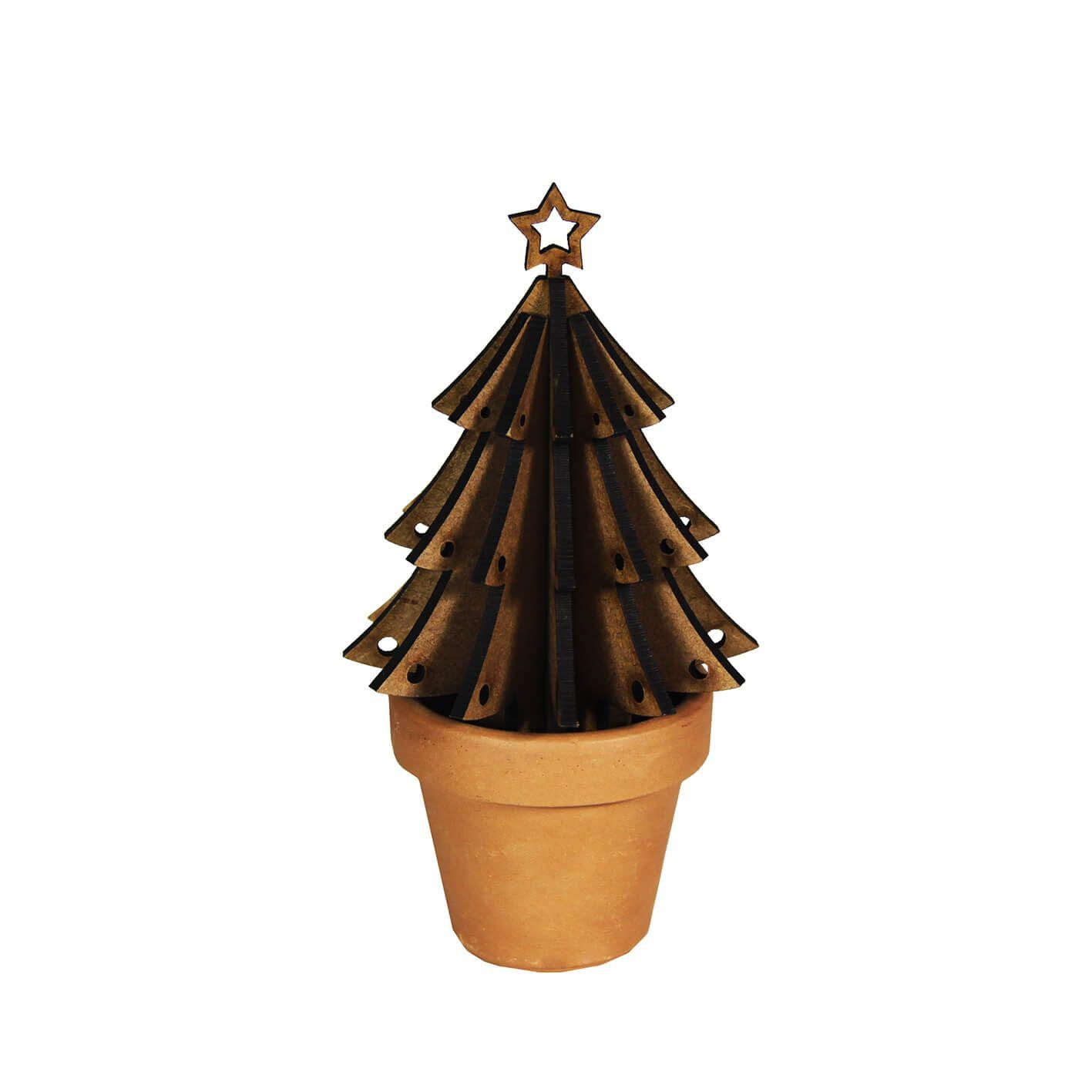 Broto Árvore de Natal