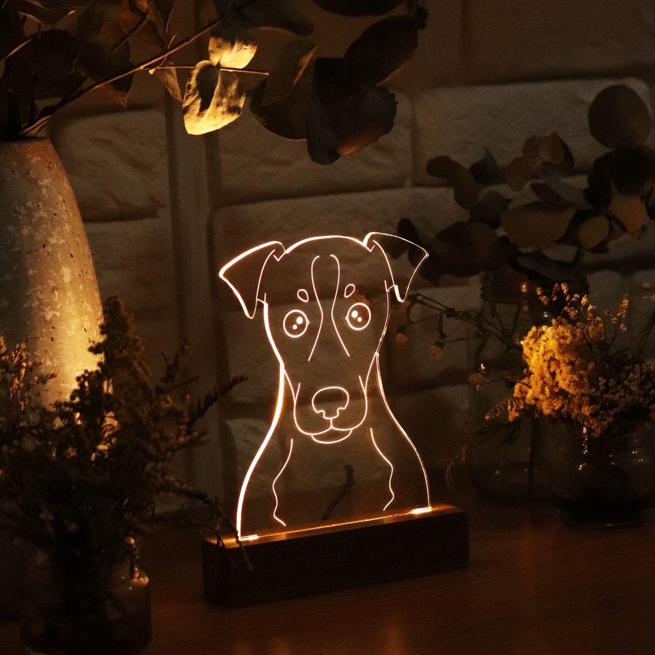 Luminária Fox Paulistinha