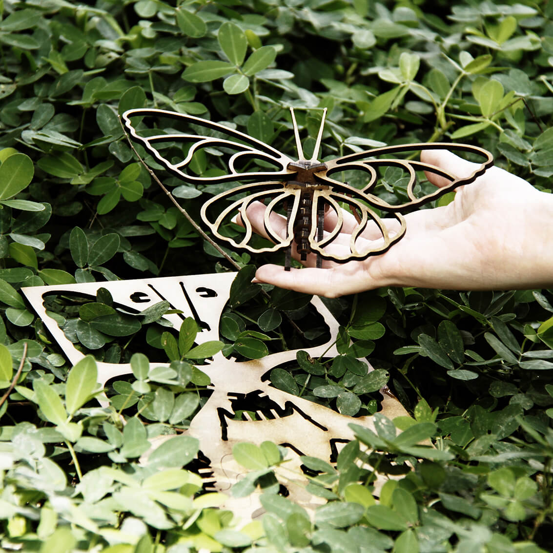 Miniatura Borboleta (Cutz)
