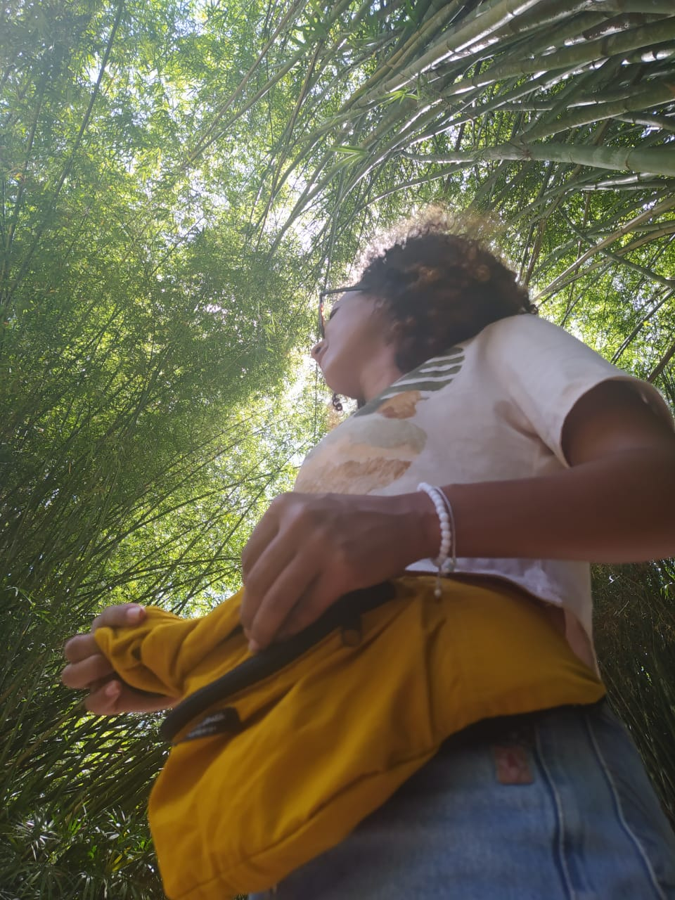 Chicachila POCKET Amarela