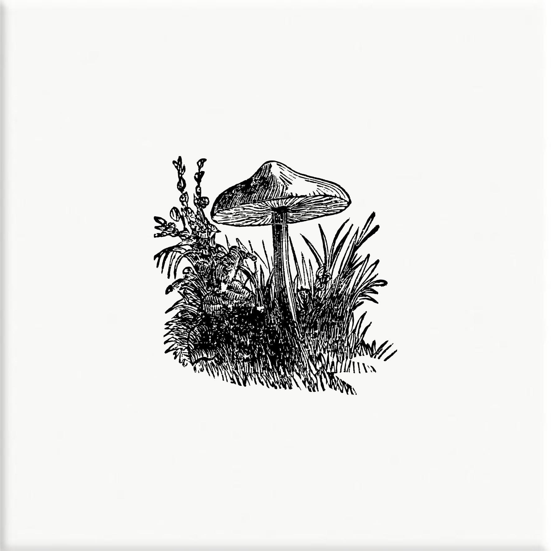 Azulejo Cogumelo