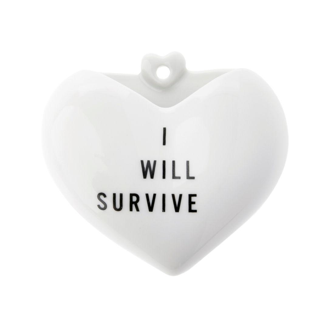 Vaso Coração - I Will Survive