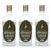 Gin Nacional Vitória Régia 750ml 03 Unidades