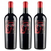 Kit 03 Unidades Vinho Caballo Loco Grand Cru Maipo 750ml