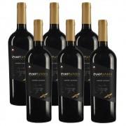 Kit 06 Un. Vinho Paso De Los Andes Cabernet Sauvignon 750ml