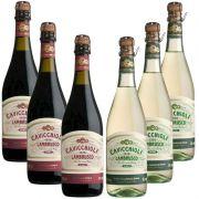 Kit Frisante Lambrusco Cavicchioli 750ml 03 Tinto e 03 Branco