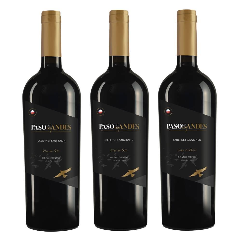 Kit 03 Un. Vinho Paso De Los Andes Cabernet Sauvignon 750ml