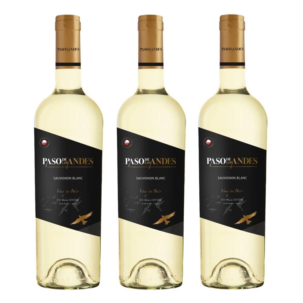 Kit 03 Un. Vinho Paso De Los Andes Sauvignon Blanc 750ml