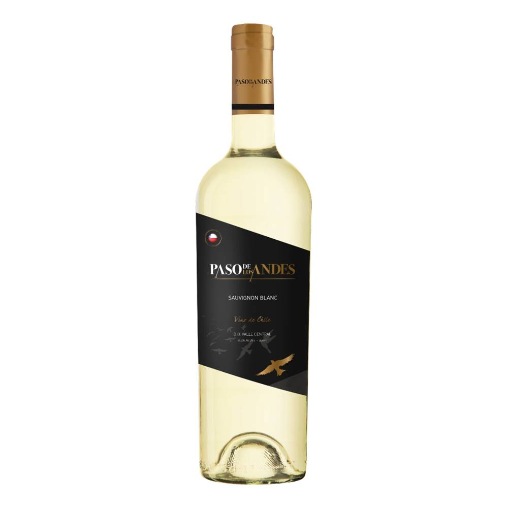 Kit 06 Un. Vinho Paso De Los Andes Sauvignon Blanc 750ml