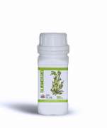 Crescimento Fertilizante Organo-mineral Santa Flor 300 ML