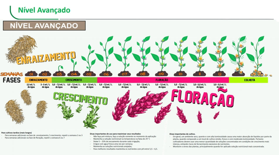 Enraizamento Fertilizante Organo-mineral Santa Flor 300 ML