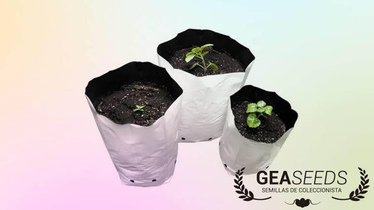 Saco Vaso para Cultivo PB 5 unidades