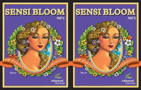 Sensi Bloom A + B pH Perfect