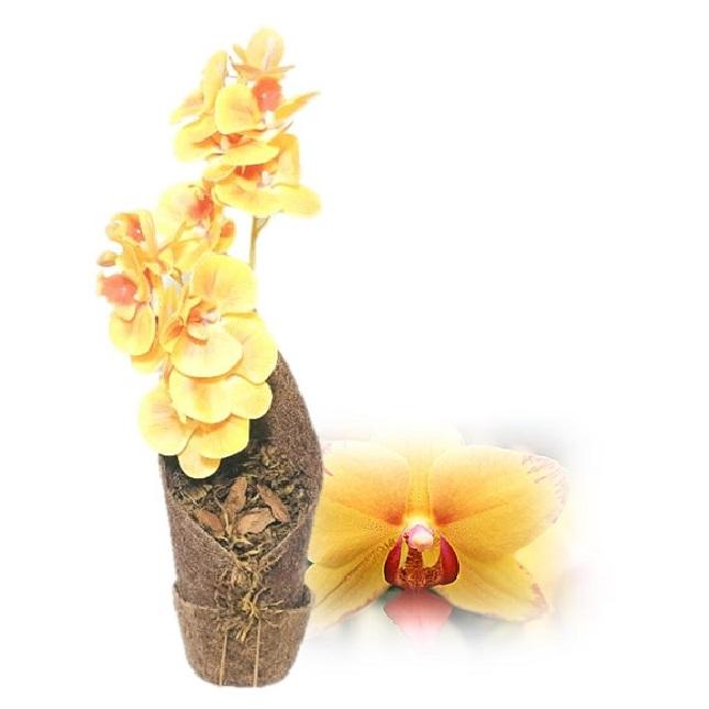 Arranjo de Orquídea Phalaenopsis Amarela Artificial